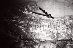 compass study 3