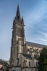 13597-Pau