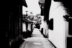 street in Cap Ferret
