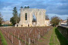 43331-Saint-Emilion - Photo of Branne