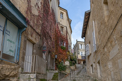 43272-Saint-Emilion - Photo of Branne