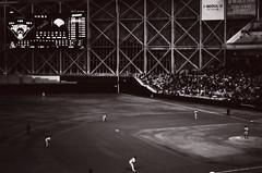 baseball Seould 2