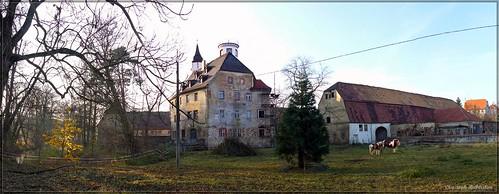 Schloss Noschkowitz
