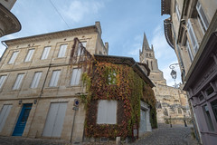43254-Saint-Emilion - Photo of Branne