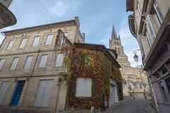 43254-Saint-Emilion - Photo of Saint-Laurent-des-Combes