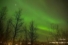 Comienzo a compartir con ustedes Las fotos de Auroras Boreales Viaje En Busca de Las Luces del Norte Tromso Marzo 2014 Norte Noruega Pincha el enlace para ver todas las fotos http://elcoleccionistadeinstantes.es/luces-del-norte-tromso-noruega-marzo-2014 #