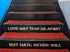 Love May Tear Us Apart But Hate Never Will