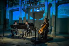 """Das Trio  Synästhesie bei einem Benefizkonzert zugunstes des """"Vereins der Freunde und Förderer der Staatlichen Hochschule für Musik in Trossingen e.V."""" am 28. November 2019 im Museum Art.Plus"""