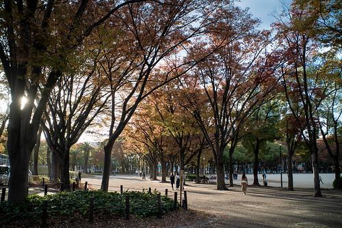 Ah! O outono!