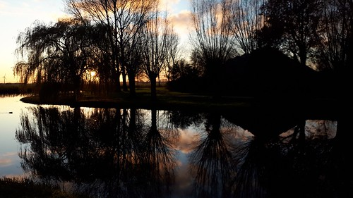 pond reflections at sunset, Sneek