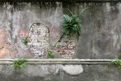 What lies beneath:  Legare Street, Charleston, SC