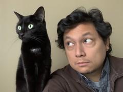 Whatcha lookin at #cat