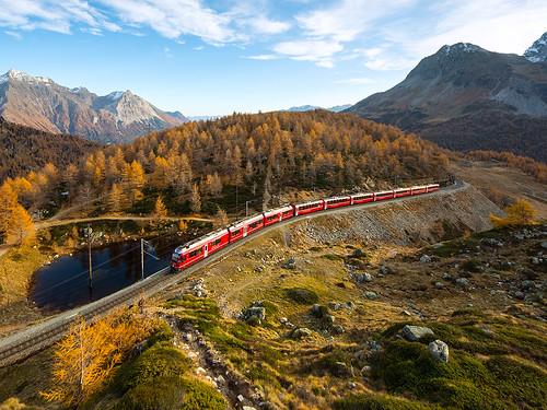 Allegra ABe 8/12, Bernina express, Alp Grüm - Ospizio Bernina, 27.10.2019