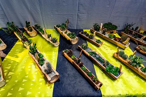12-Cailloo Bamboo
