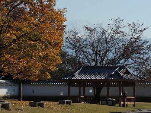 Maizuru Castle Park, Kōfu