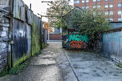 URBAN EXPRESSION AND DEPRESSION AT PETERS PLACE - 8 NOVEMBER 2019  [ON THE LUAS GREEN LINE]-158309
