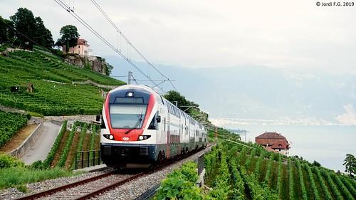 CFF RABe 511 sur le Train des Vignes à Chexbres (CH-VD)