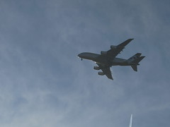 windsor planes