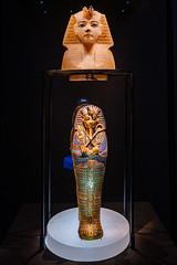 The Treasure of the Golden Pharaoh