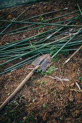 Sticks and shovel for vegetables in greenhouse.