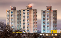 Horn Towers - South Minneapolis MPHA Public Housing