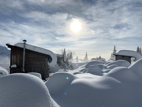 Premières neiges - Novembre 2019