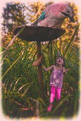 Sophie In Wonderland