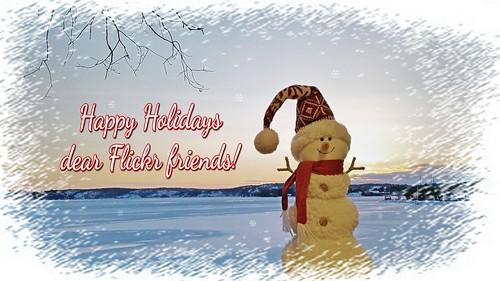🎄 Happy Holidays! 🎄
