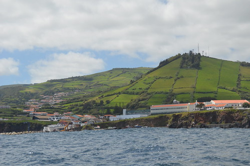 From Corvo to Flores VIII