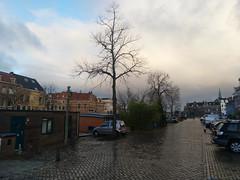 Kalvermarkt