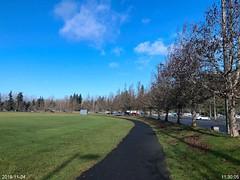 Jogging on McCollum Park Trail