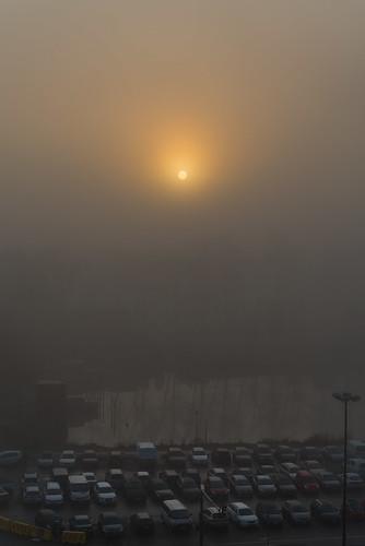 A Foggy Morning 2
