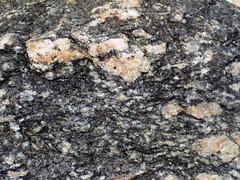 Augen gneiss (Mt. Harrison, Cassia County, Idaho, USA)