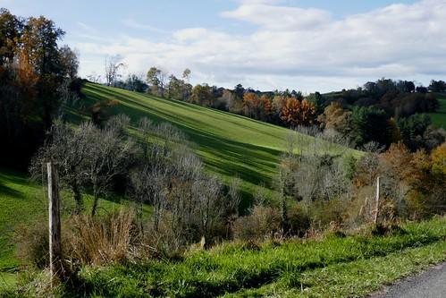 Beauté automnale, chemin de Barbé, Bosdarros, Béarn, Pyrénées Atlantiques, Nouvelle-Aquitaine, France.
