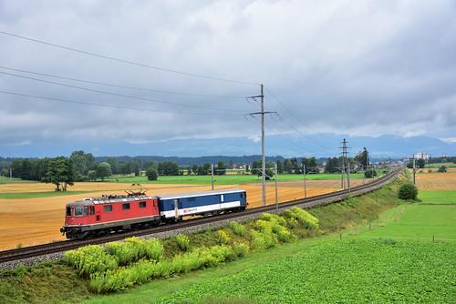 Jail Train