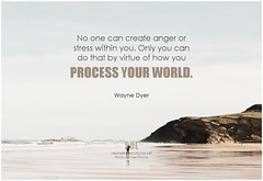 Wayne Dyer No one can create anger or stress within you. Only you can do that by virtue of how you process your world