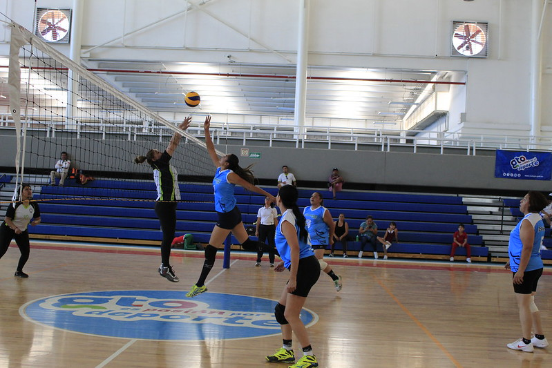 Voleibol Femenil