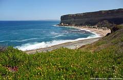 Praia da Foz - Portugal 🇵🇹