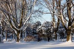Winter Campus Scenes-15