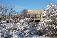 Winter Campus Scenes-13