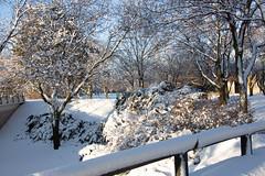 Winter Campus Scenes-4