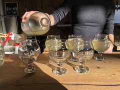 Root Wild - PORTLAND Maine Foodie Tours