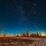 Winter Sky Rising in the Moonlight