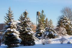 Winter Campus Scenes-7