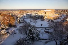 Winter Campus Scenes-1