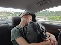 Gustav sleeping in my car