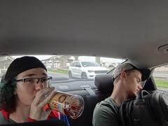 Rafe and Gustav sleeping in my car