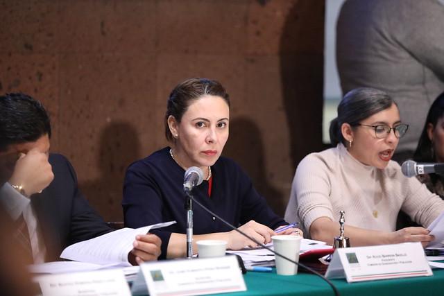 03/12/2019 Comisiones Unidas de Gobernación e Igualdad de Género