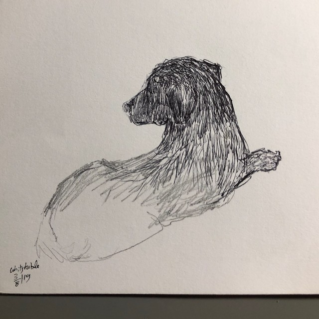 Sketch of a dog at the next table 10min at Whitstable