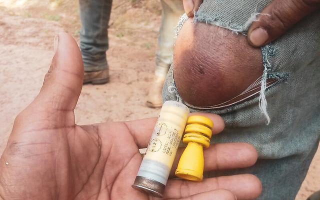 Trabalhadores foram atingidos quando retornavam da floresta carregando as castanhas coletadas - Créditos: Arquivo pessoal